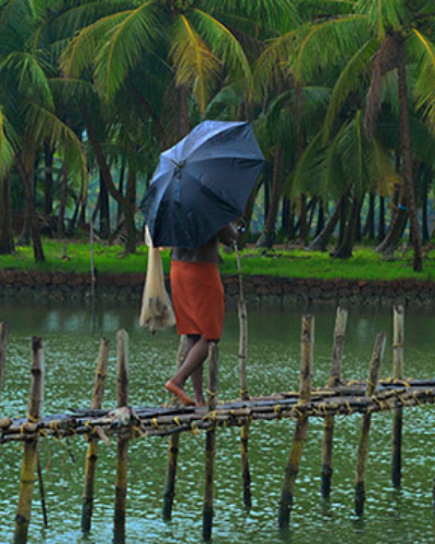 A Tale of Monsoons